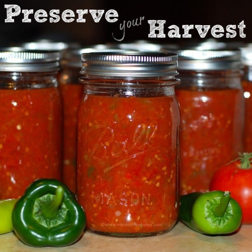 Easy Salsa Canning