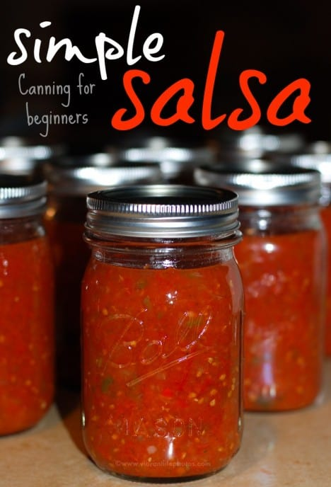 Super Simple Salsa Canning for Beginners