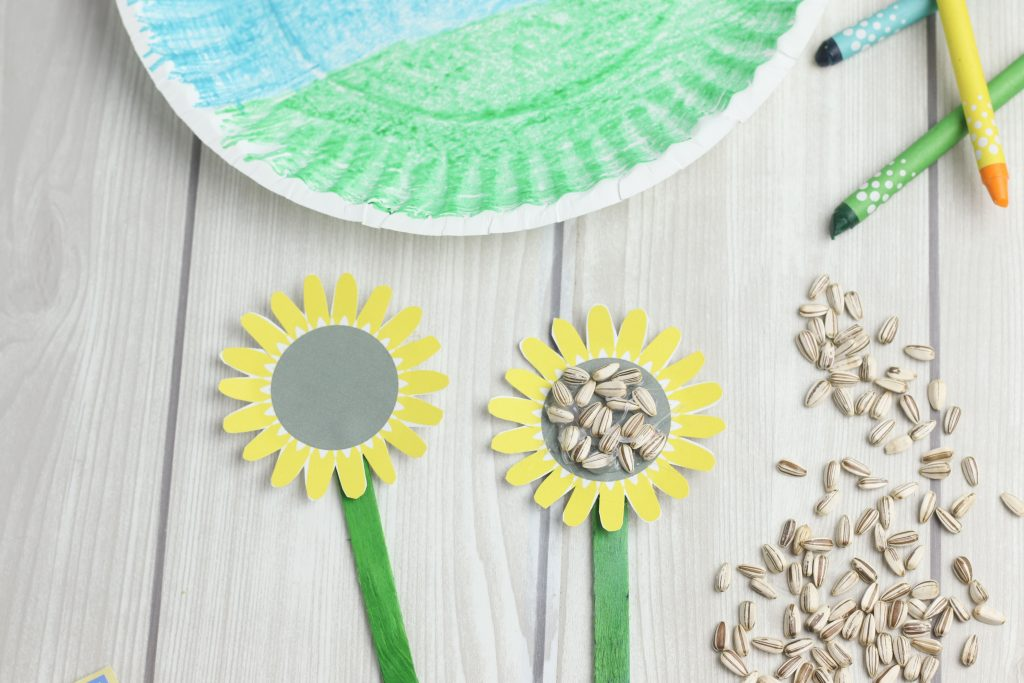 Gluing sunflower seeds on the paper flowers