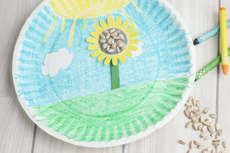 paper Plate craft with sunflower seeds